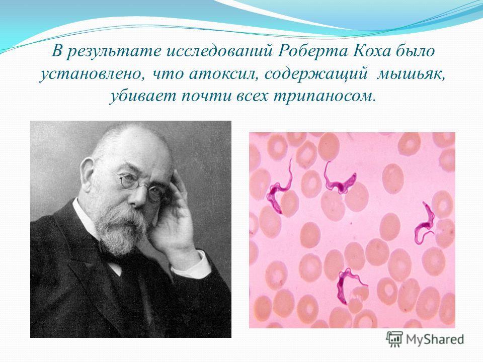 В результате исследований Роберта Коха было установлено, что атоксил, содержащий мышьяк, убивает почти всех трипаносом.
