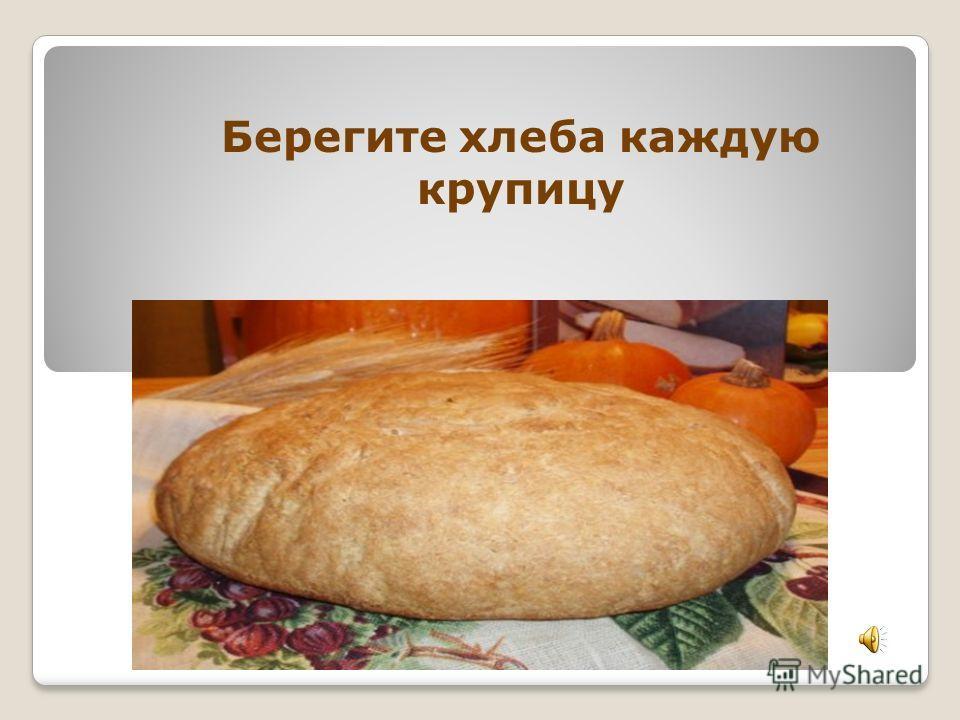 Берегите хлеба каждую крупицу