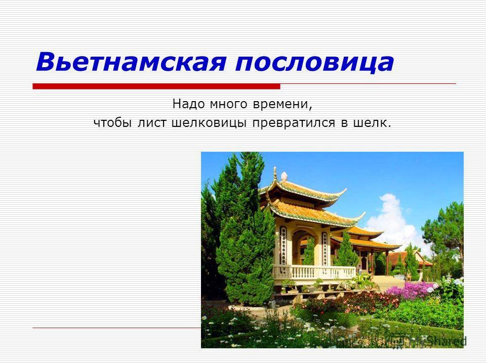 Вьетнамская пословица Надо много времени, чтобы лист шелковицы превратился в шелк.