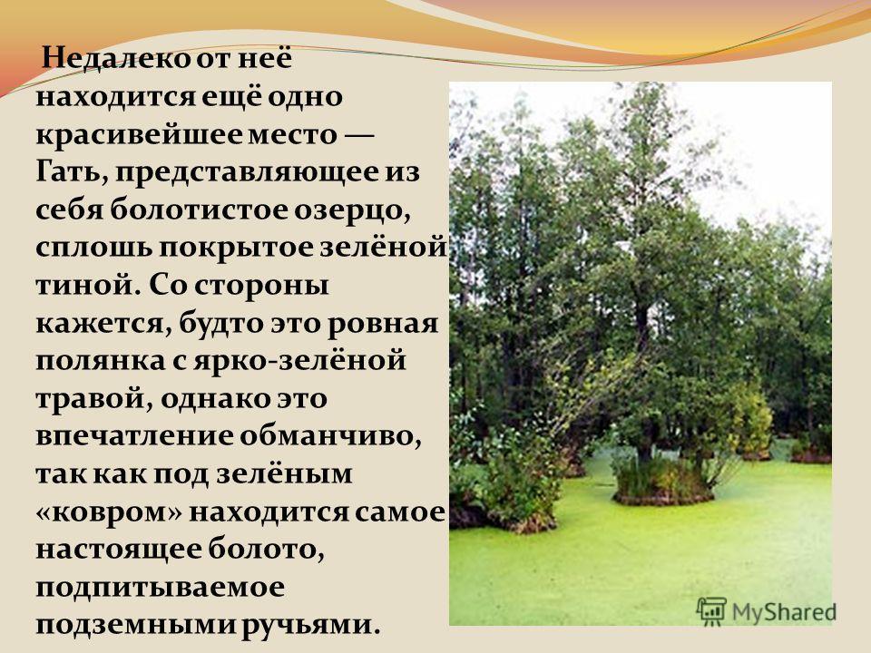 Недалеко от неё находится ещё одно красивейшее место Гать, представляющее из себя болотистое озерцо, сплошь покрытое зелёной тиной. Со стороны кажется, будто это ровная полянка с ярко-зелёной травой, однако это впечатление обманчиво, так как под зелё