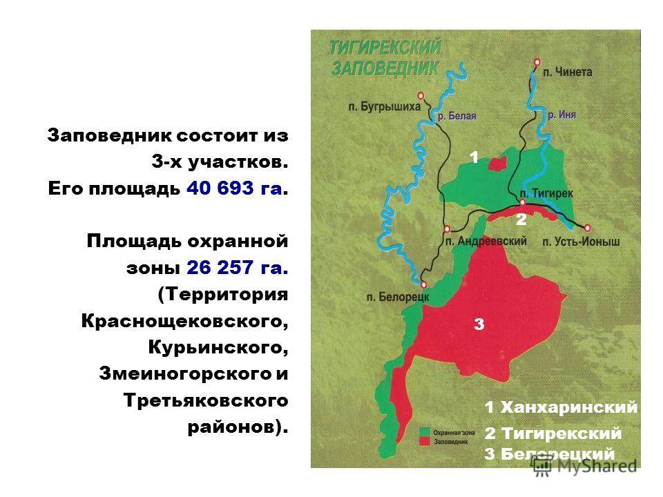 Заповедник состоит из 3-х участков. Его площадь 40 693 га. Площадь охранной зоны 26 257 га. (Территория Краснощековского, Курьинского, Змеиногорского и Третьяковского районов). 3 Белорецкий 1 2 Тигирекский 2 3 1 Ханхаринский