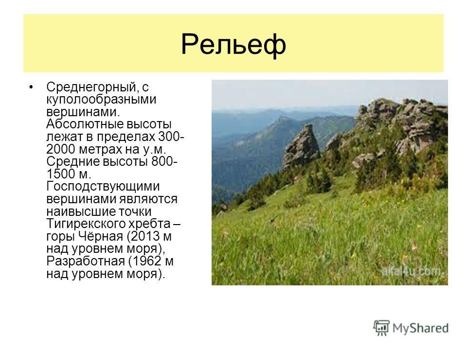 Рельеф Среднегорный, с куполообразными вершинами. Абсолютные высоты лежат в пределах 300- 2000 метрах на у.м. Средние высоты 800- 1500 м. Господствующими вершинами являются наивысшие точки Тигирекского хребта – горы Чёрная (2013 м над уровнем моря),