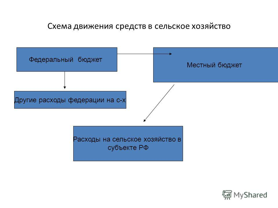 Схема движения средств в сельское хозяйство Федеральный бюджет Расходы на сельское хозяйство в субъекте РФ Местный бюджет Другие расходы федерации на с-х