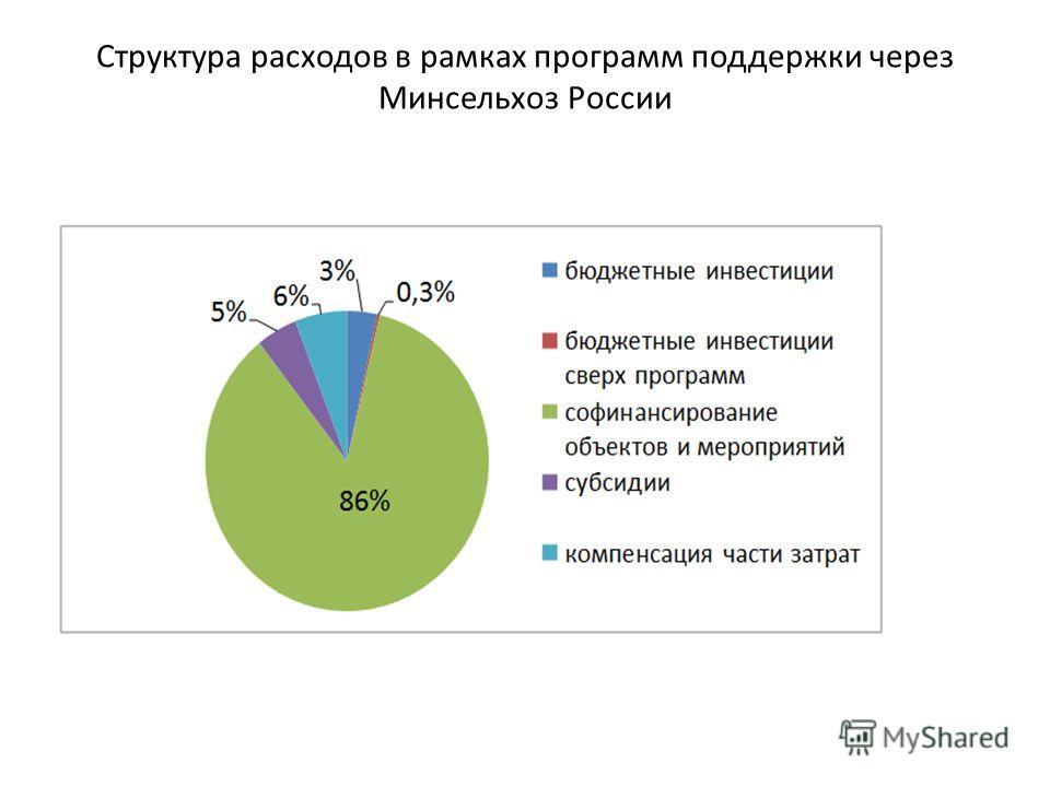 Структура расходов в рамках программ поддержки через Минсельхоз России