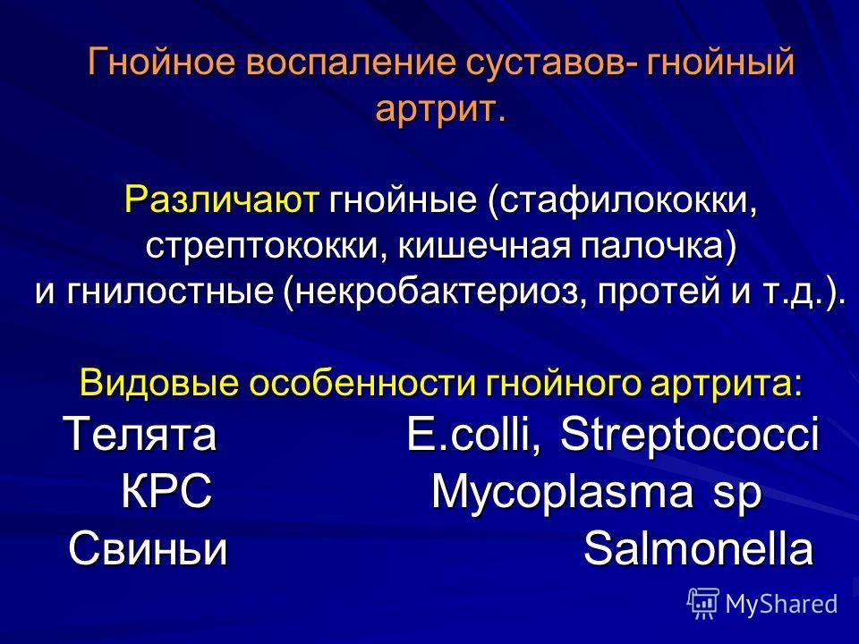Гнойное воспаление суставов- гнойный артрит. Различают гнойные (стафилококки, стрептококки, кишечная палочка) и гнилостные (некробактериоз, протей и т.д.). Видовые особенности гнойного артрита: Телята E.colli, Streptococci КРС Mycoplasma sp Свиньи Sa