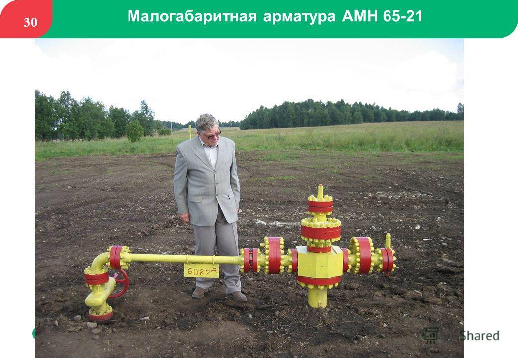 30 Малогабаритная арматура АМН 65 21