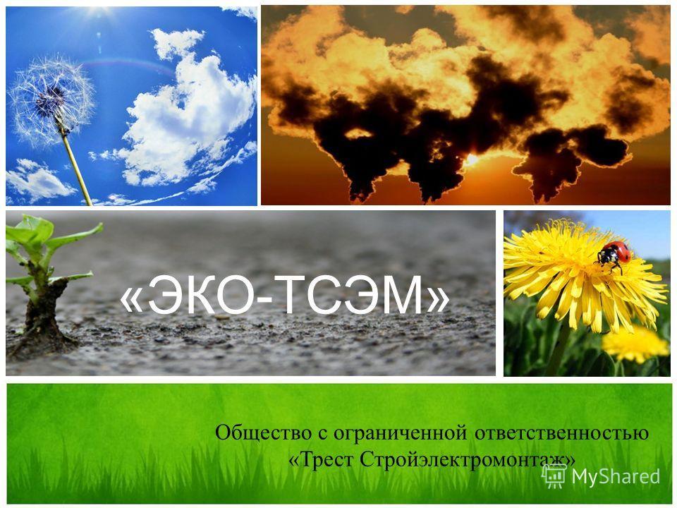 «ЭКО-ТСЭМ» Общество с ограниченной ответственностью «Трест Стройэлектромонтаж»