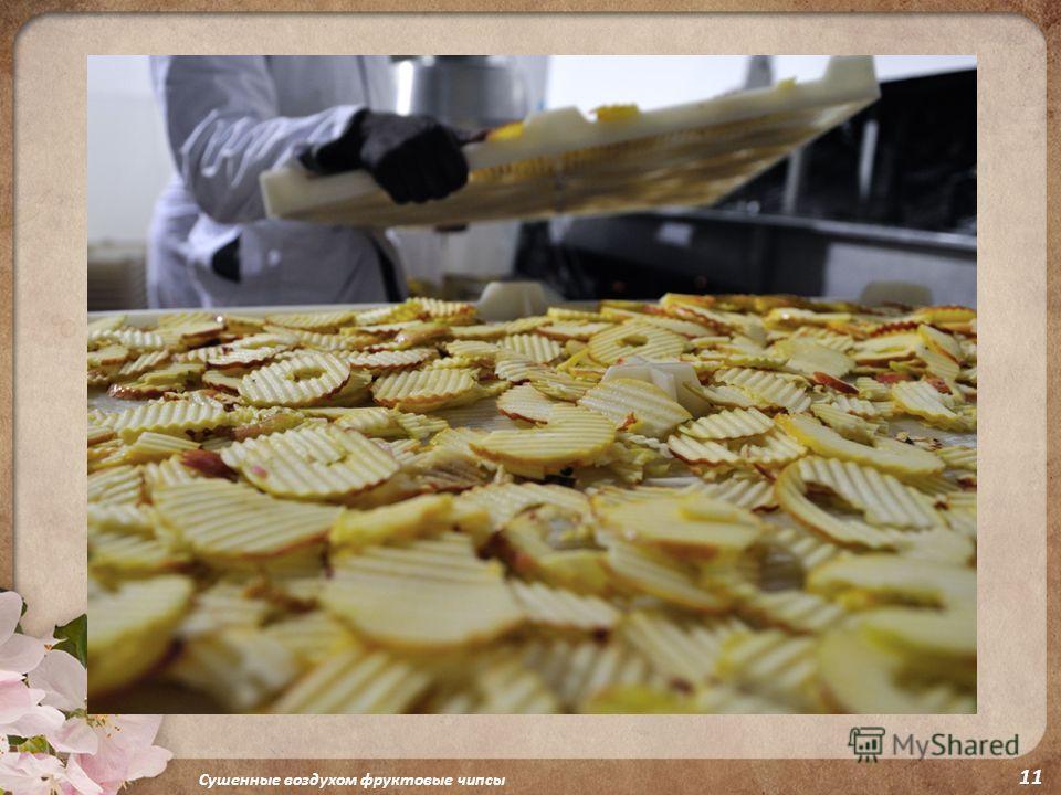 Сушенные воздухом фруктовые чипсы 11