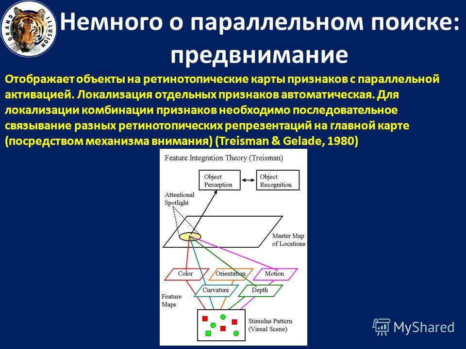 Немного о параллельном поиске: предвнимание Отображает объекты на ретинотопические карты признаков с параллельной активацией. Локализация отдельных признаков автоматическая. Для локализации комбинации признаков необходимо последовательное связывание