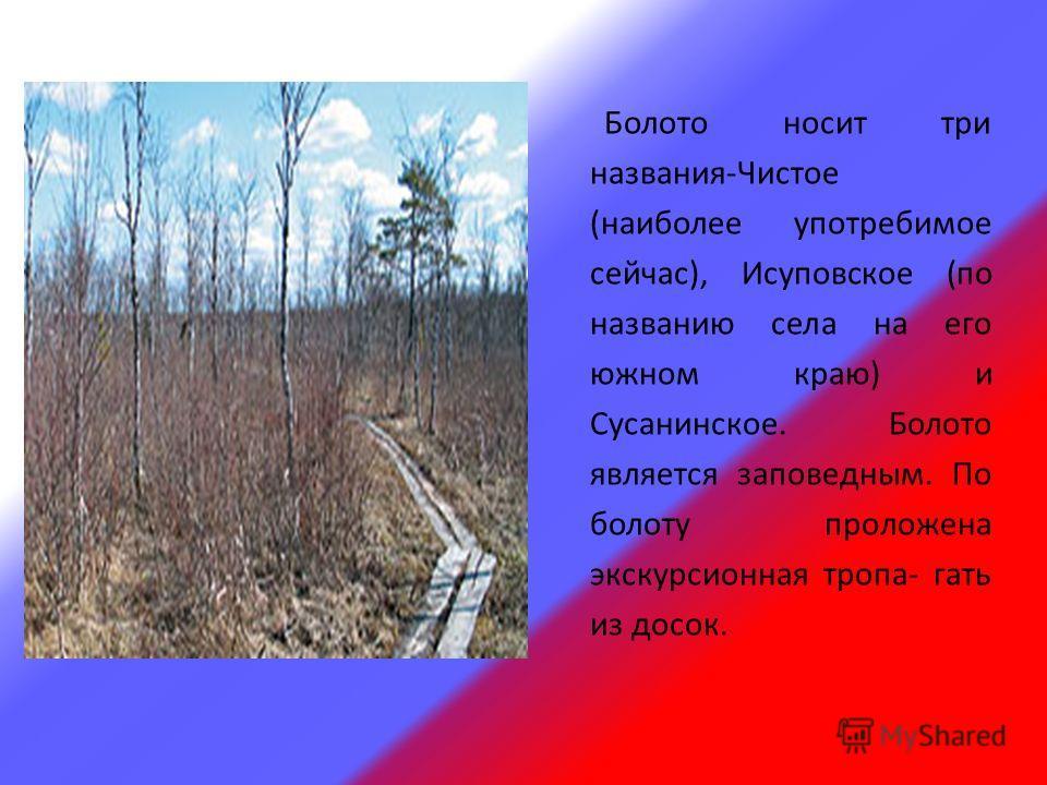 Болото носит три названия-Чистое (наиболее употребимое сейчас), Исуповское (по названию села на его южном краю) и Сусанинское. Болото является заповедным. По болоту проложена экскурсионная тропа- гать из досок.