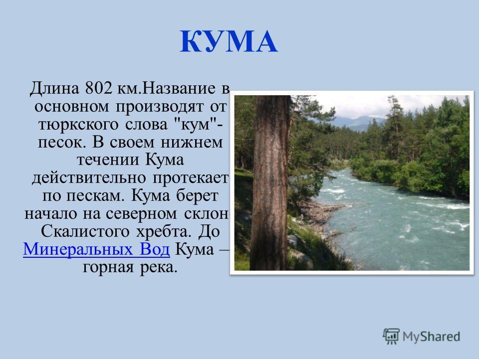 ТЕРЕК На карачаево-балкарском языке «терк су» означает «быстрая вода»