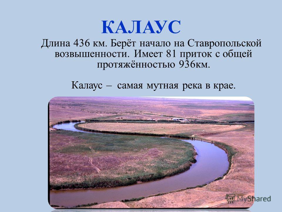 СУРКУЛЬ Суркуль [ногайское- солёное (или жёлтое) озеро], левый приток Кумы.Протекает через наше село. Река течёт на юго-восток. Длина составляет 119 км; На южной окраине села Канглы Суркуль впадает в Куму.
