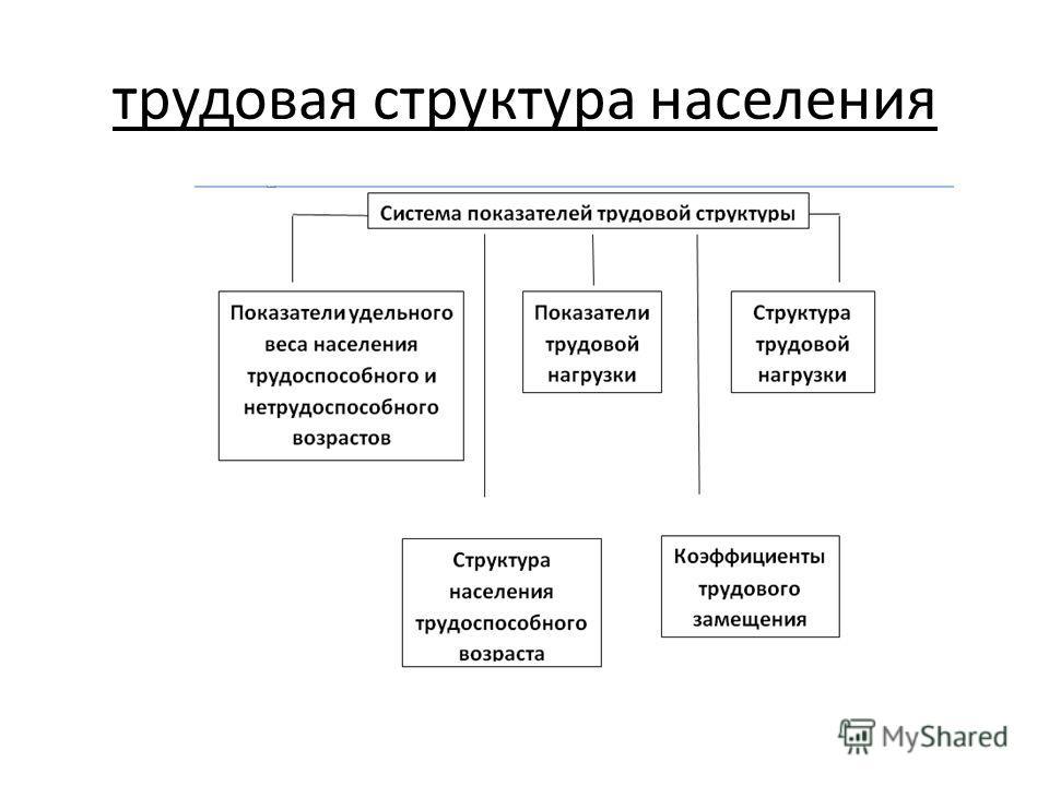 трудовая структура населения