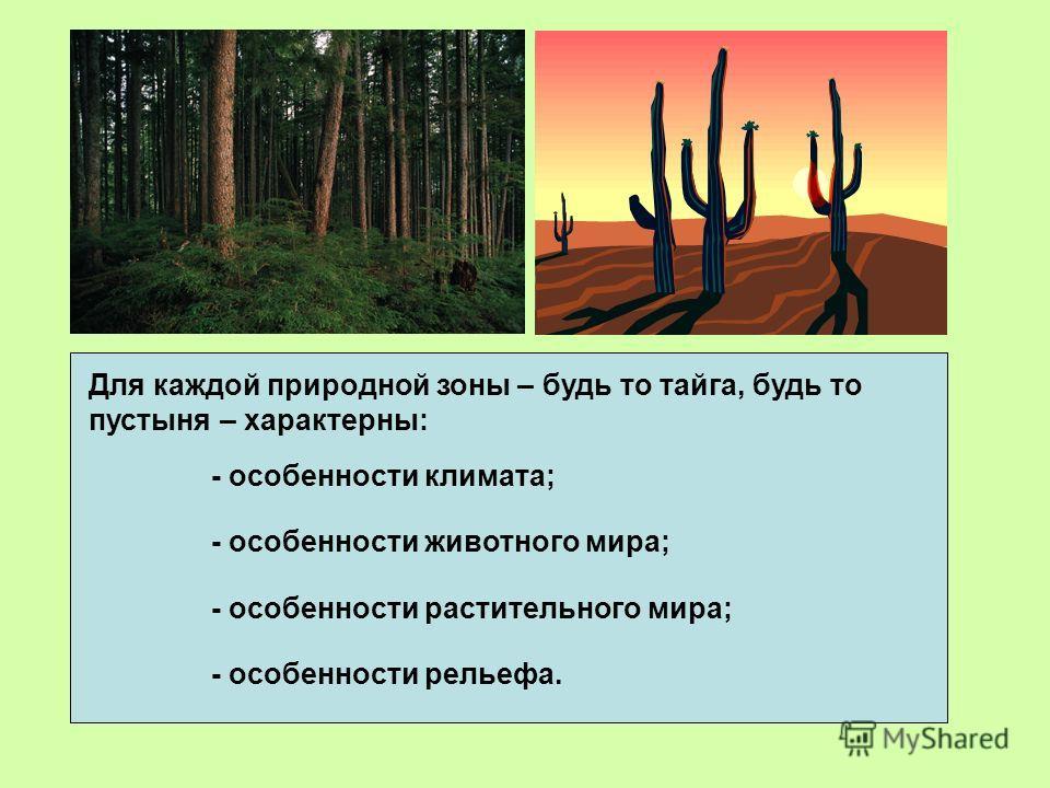 Для каждой природной зоны – будь то тайга, будь то пустыня – характерны: - особенности климата; - особенности животного мира; - особенности растительного мира; - особенности рельефа.