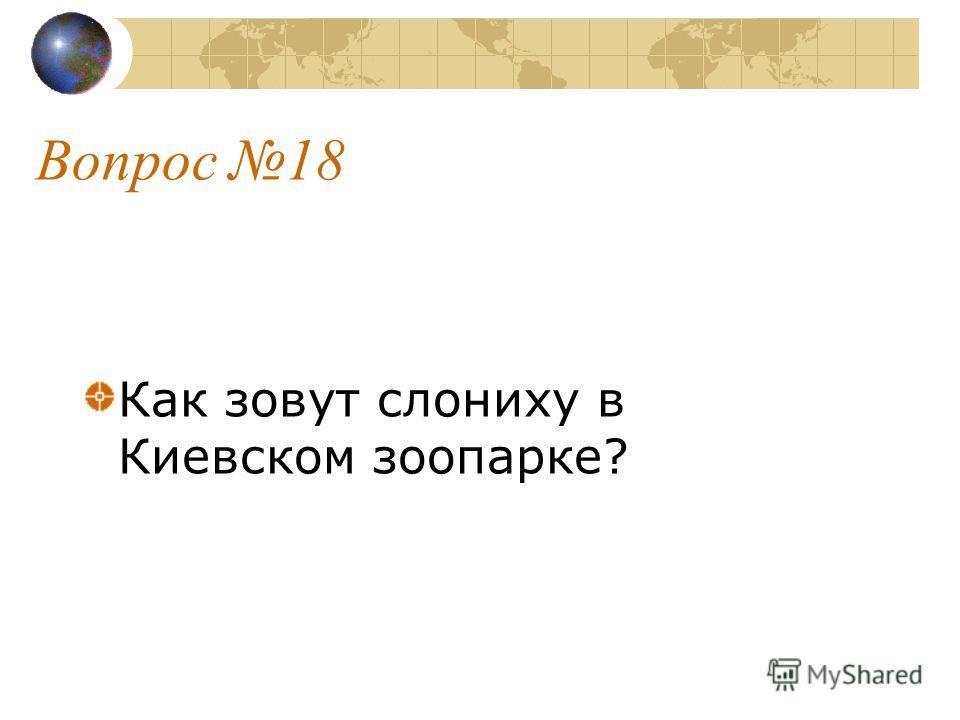 Вопрос 18 Как зовут слониху в Киевском зоопарке?