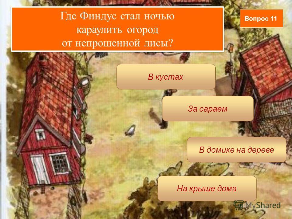 Вопрос 11 В домике на дереве В кустах За сараем На крыше дома Где Финдус стал ночью караулить огород от непрошенной лисы? Где Финдус стал ночью караулить огород от непрошенной лисы?