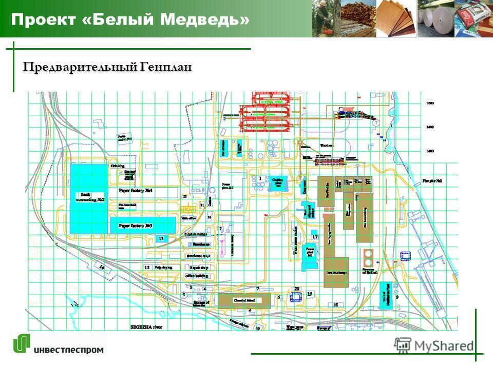 Предварительный Генплан Проект «Белый Медведь»