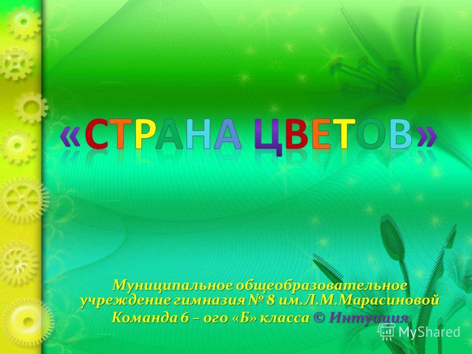 Муниципальное общеобразовательное учреждение гимназия 8 им.Л.М.Марасиновой Команда 6 – ого «Б» класса © Интуиция