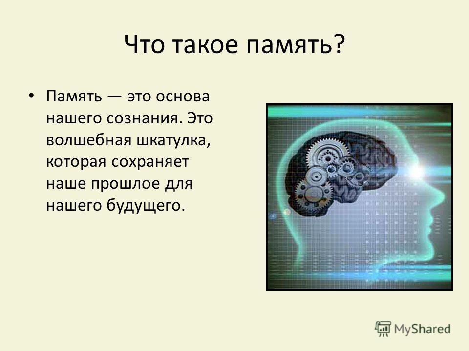 Что такое память? Память это основа нашего сознания. Это волшебная шкатулка, которая сохраняет наше прошлое для нашего будущего.