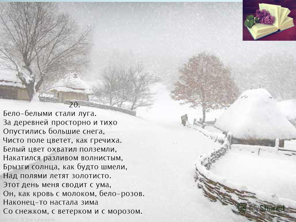 20. Бело-белыми стали луга. За деревней просторно и тихо Опустились большие снега, Чисто поле цветет, как гречиха. Белый цвет охватил полземли, Накатился разливом волнистым, Брызги солнца, как будто шмели, Над полями летят золотисто. Этот день меня с