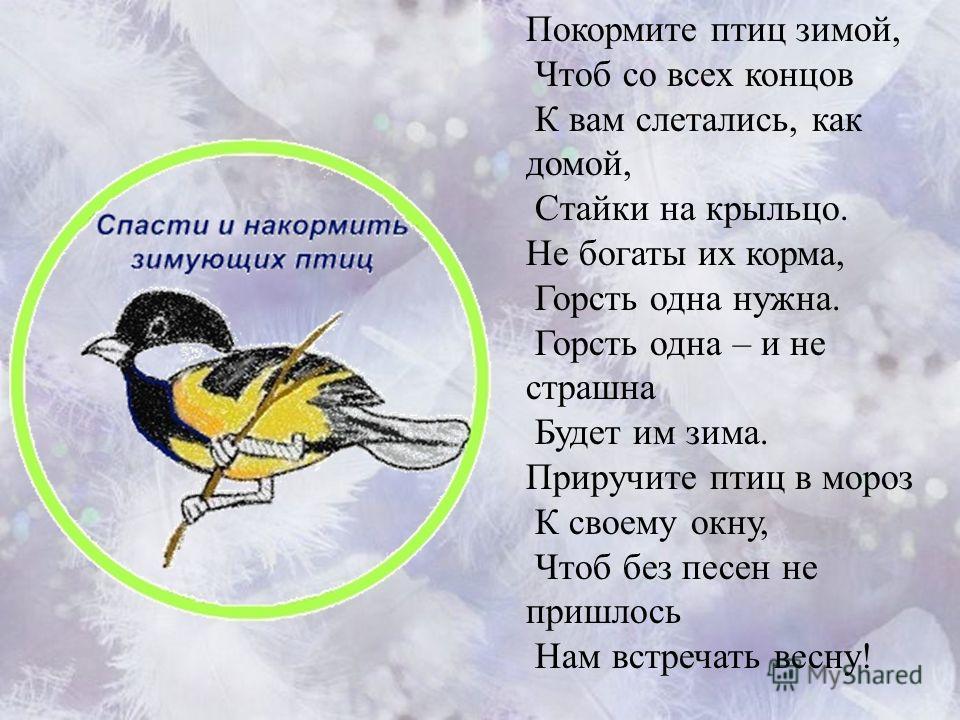Покормите птиц зимой, Чтоб со всех концов К вам слетались, как домой, Стайки на крыльцо. Не богаты их корма, Горсть одна нужна. Горсть одна – и не страшна Будет им зима. Приручите птиц в мороз К своему окну, Чтоб без песен не пришлось Нам встречать в