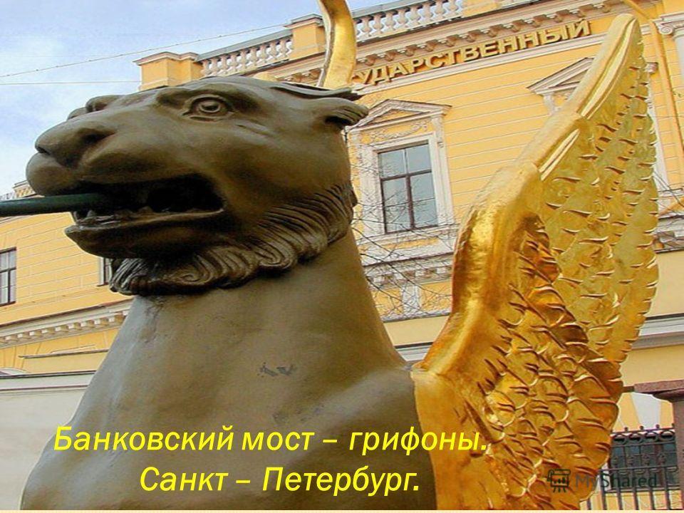 Банковский мост – грифоны. Санкт – Петербург.