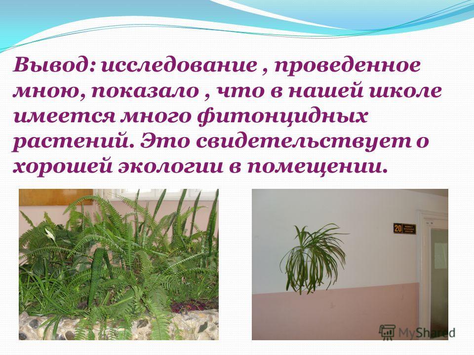 Вывод: исследование, проведенное мною, показало, что в нашей школе имеется много фитонцидных растений. Это свидетельствует о хорошей экологии в помещении.