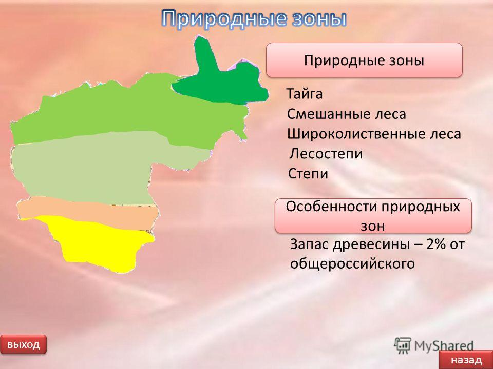 назад выход Запас древесины – 2% от общероссийского Особенности природных зон Тайга Природные зоны Смешанные леса Широколиственные леса Лесостепи Степи