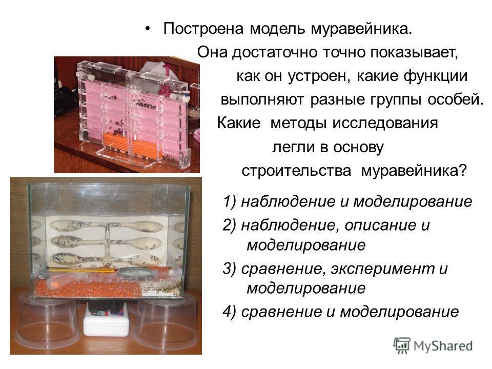 Построена модель муравейника. Она достаточно точно показывает, как он устроен, какие функции выполняют разные группы особей. Какие методы исследования легли в основу строительства муравейника? 1) наблюдение и моделирование 2) наблюдение, описание и м