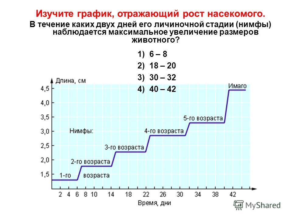 Изучите график, отражающий рост насекомого. В течение каких двух дней его личиночной стадии (нимфы) наблюдается максимальное увеличение размеров животного? 1) 6 – 8 2) 18 – 20 3) 30 – 32 4) 40 – 42