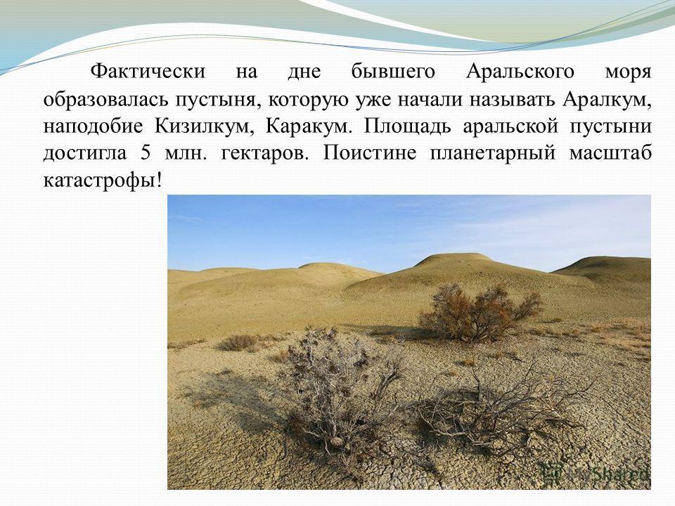 Фактически на дне бывшего Аральского моря образовалась пустыня, которую уже начали называть Аралкум, наподобие Кизилкум, Каракум. Площадь аральской пустыни достигла 5 млн. гектаров. Поистине планетарный масштаб катастрофы!