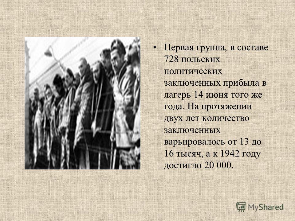 Первая группа, в составе 728 польских политических заключенных прибыла в лагерь 14 июня того же года. На протяжении двух лет количество заключенных варьировалось от 13 до 16 тысяч, а к 1942 году достигло 20 000. 5