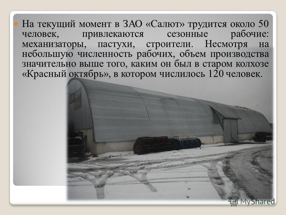 На текущий момент в ЗАО «Салют» трудится около 50 человек, привлекаются сезонные рабочие: механизаторы, пастухи, строители. Несмотря на небольшую численность рабочих, объем производства значительно выше того, каким он был в старом колхозе «Красный ок