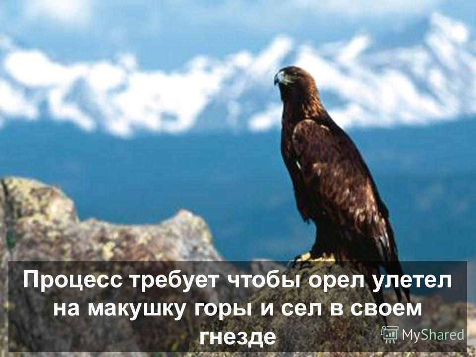 Тогда, у орла остается два только выбора: умереть или пройти через болезненный процесс перемен который длится 150 дней.