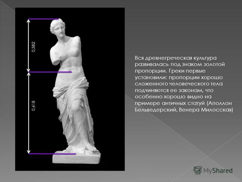 0,382 0,618 Вся древнегреческая культура развивалась под знаком золотой пропорции. Греки первые установили: пропорции хорошо сложенного человеческого тела подчиняются ее законам, что особенно хорошо видно на примере античных статуй (Аполлон Бельведер