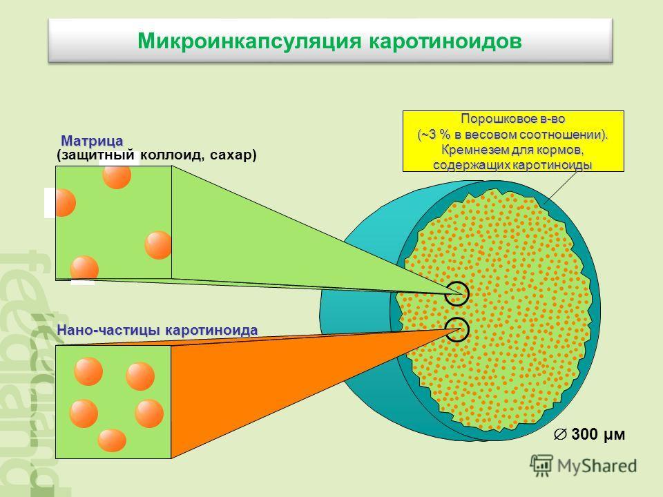 Микроинкапсуляция каротиноидов