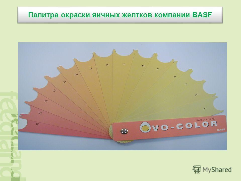Палитра окраски яичных желтков компании BASF