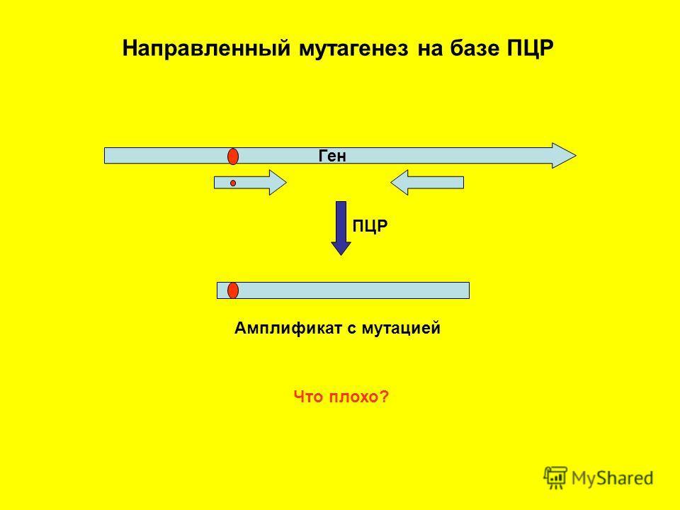 Направленный мутагенез на базе ПЦР Ген ПЦР Амплификат с мутацией Что плохо?