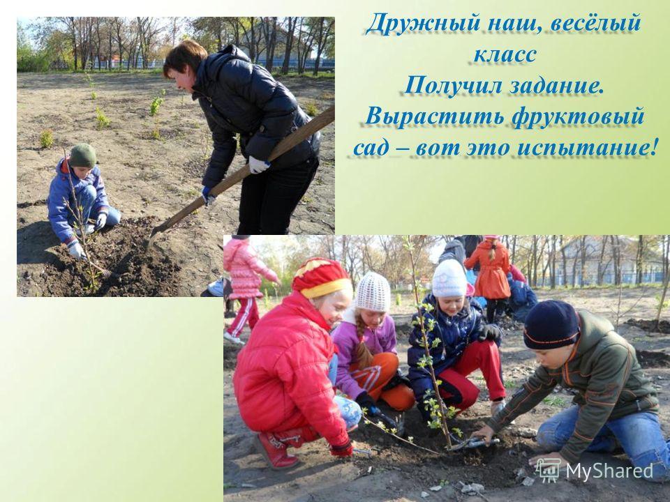 Дружный наш, весёлый класс Получил задание. Вырастить фруктовый сад – вот это испытание!