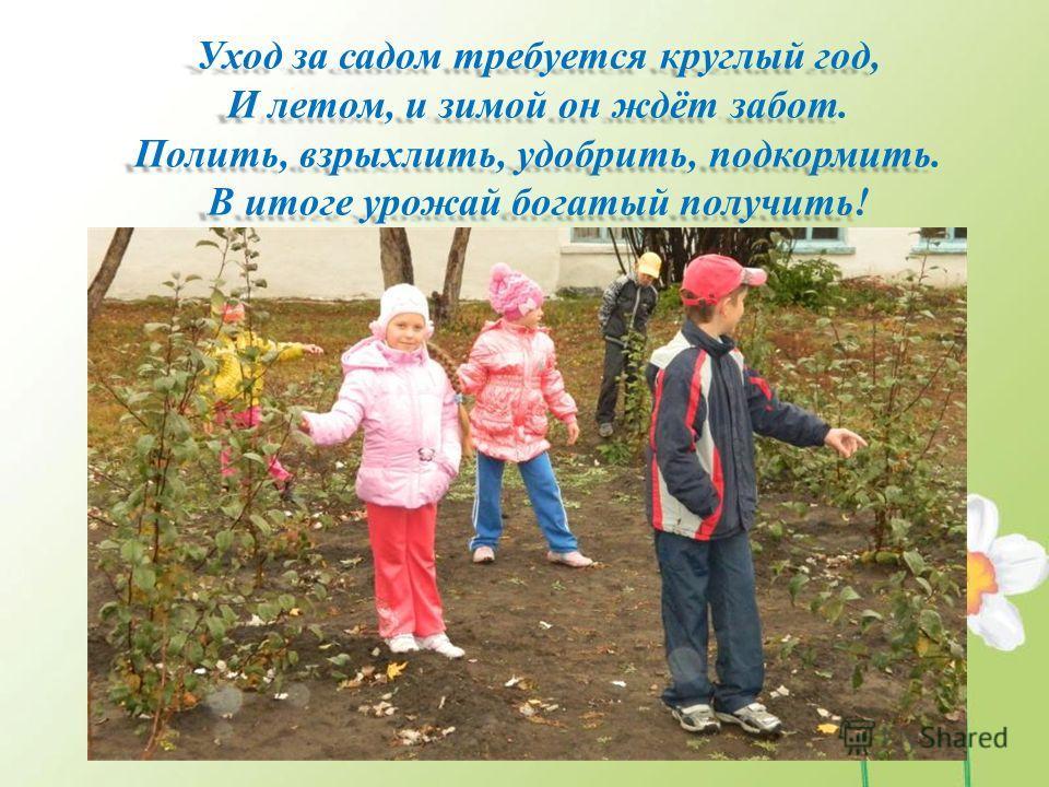 Уход за садом требуется круглый год, И летом, и зимой он ждёт забот. Полить, взрыхлить, удобрить, подкормить. В итоге урожай богатый получить!