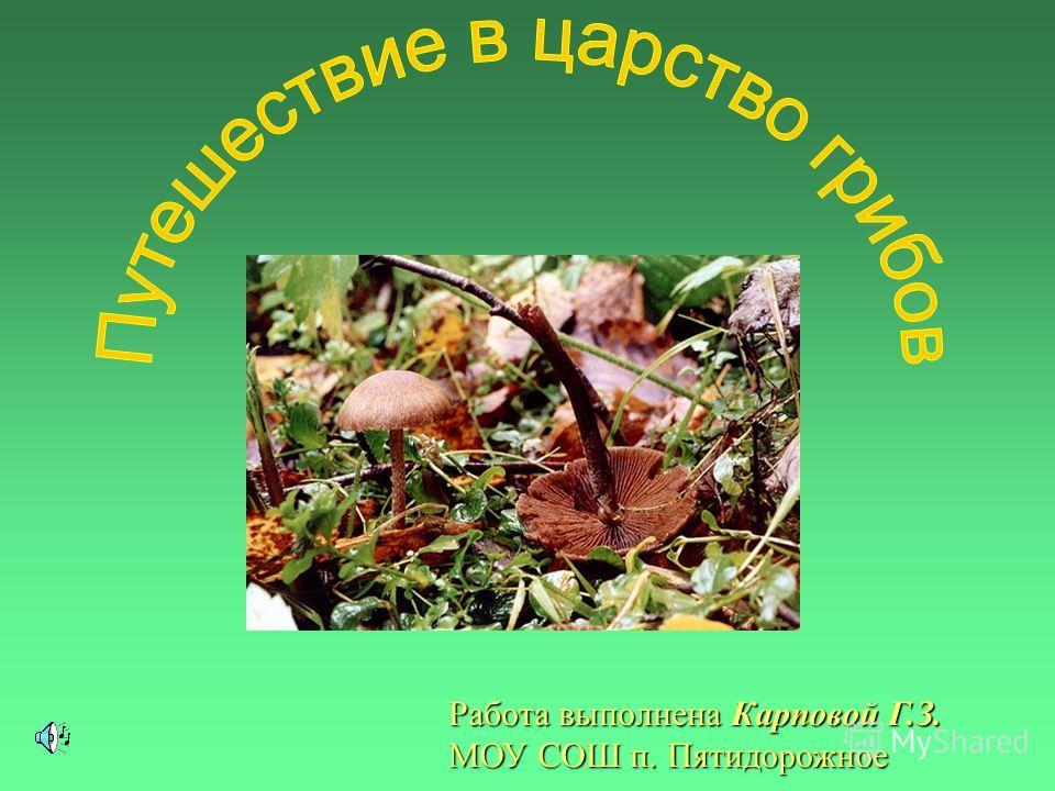 Работа выполнена Карповой Г.З. МОУ СОШ п. Пятидорожное