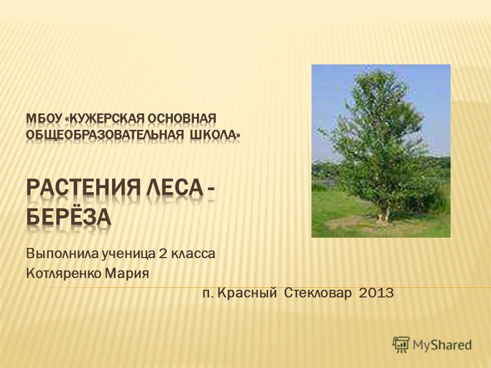 Выполнила ученица 2 класса Котляренко Мария п. Красный Стекловар 2013