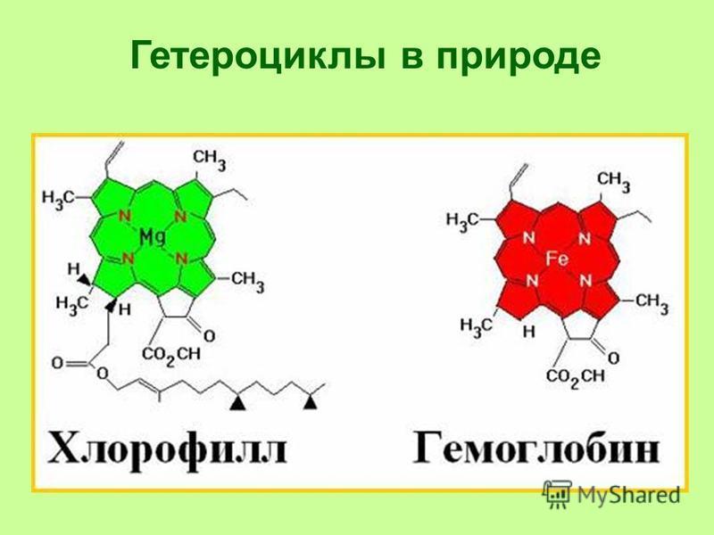 Гетероциклы в природе