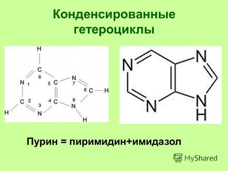 Конденсированные гетероциклы Пурин = пиримидин+имидазол