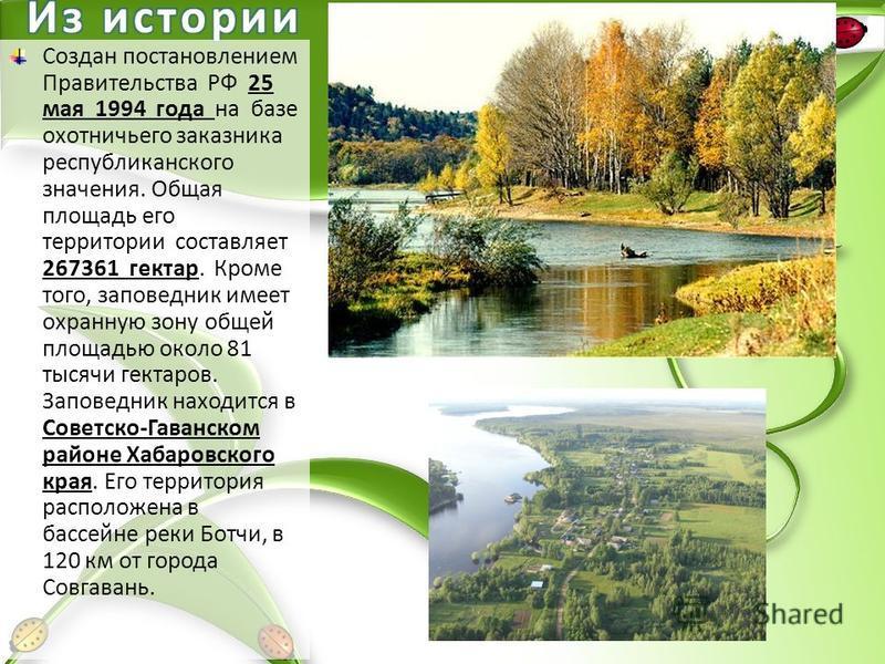 Создан постановлением Правительства РФ 25 мая 1994 года на базе охотничьего заказника республиканского значения. Общая площадь его территории составляет 267361 гектар. Кроме того, заповедник имеет охранную зону общей площадью около 81 тысячи гектаров