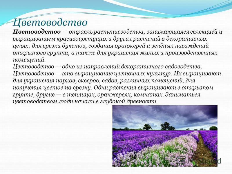 Отрасль сельского хозяйства которая занимается выращиванием полезных растений 10