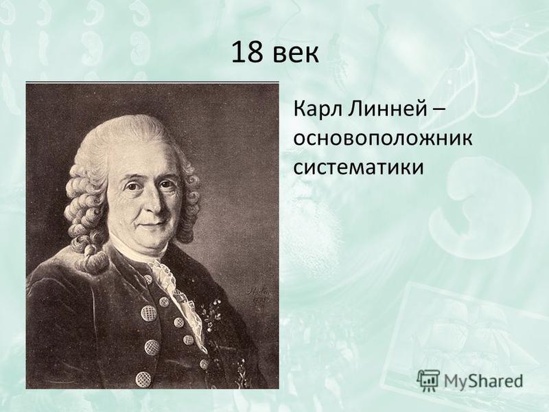 18 век Карл Линней – основоположник систематики