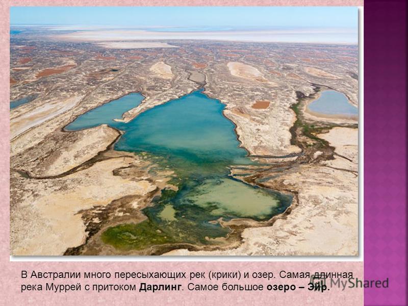 В Австралии много пересыхающих рек (крики) и озер. Самая длинная река Муррей с притоком Дарлинг. Самое большое озеро – Эйр.
