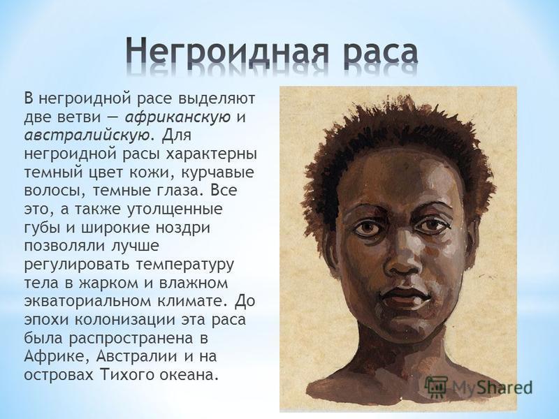 В негроидной расе выделяют две ветви африканскую и австралийскую. Для негроидной расы характерны темный цвет кожи, курчавые волосы, темные глаза. Все это, а также утолщенные губы и широкие ноздри позволяли лучше регулировать температуру тела в жарком