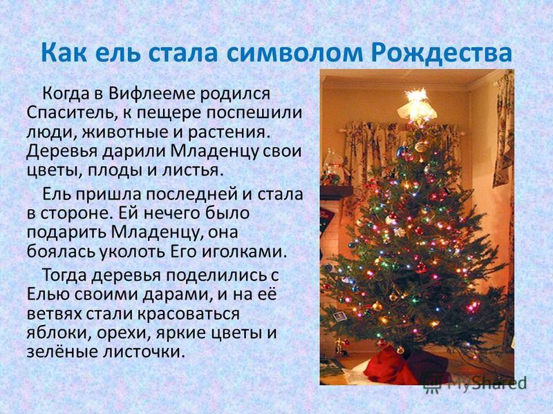 Как ель стала символом Рождества Когда в Вифлееме родился Спаситель, к пещере поспешили люди, животные и растения. Деревья дарили Младенцу свои цветы, плоды и листья. Ель пришла последней и стала в стороне. Ей нечего было подарить Младенцу, она бояла